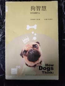 狗智慧:它们在想什么