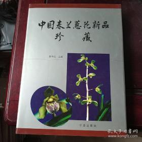 中国春兰蕙花新品珍藏