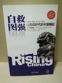 自救图强:后危机时代的中国崛起
