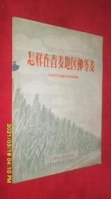 怎样在春麦地区种冬麦(1956年1版1印)
