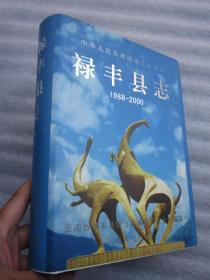 """禄丰县志  1988-2000"""""""""""