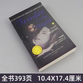 纯英文 夜色温柔 英文版原版原著 书籍正版 菲茨杰拉德 书