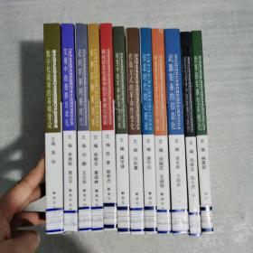 世界新军事变革丛书 全12册