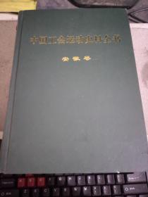 中国工会运动史料全书 安徽卷