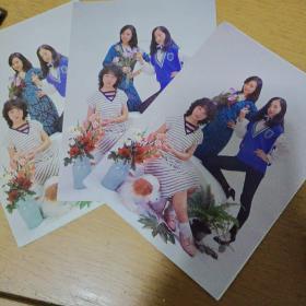 上海小姐散的明信片11枚合售