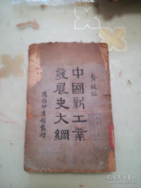 中国新工业发展史大纲(民国24年)