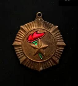 80年代:北京海淀区少工委,珐琅铜奖章美品