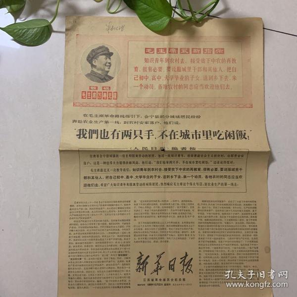 新华日报1968.12.22