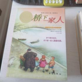 桥下一家人  纽伯瑞儿童文学奖银奖  国际大奖小说•爱藏本