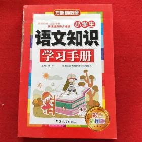 【正版图书现货】小学生语文知识学习手册 彩色插图版