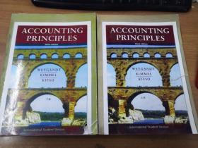 Accounting Principles, 9Th Editio(上下)(影印版)
