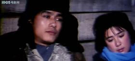 《神奇的土地》DVD(张丰毅/傅艺伟/胡兢兢/杨晓丹)