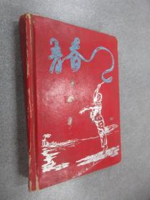 青春   老笔记本    精装有水印,内有字迹