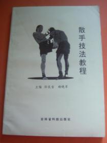 散手技法教程