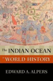 世界历史上的印度洋  The Indian Ocean in World History