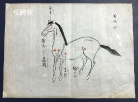 《善旋之图》及《恶旋图》1套2件全,日本老旧手绘件,合计手绘有两匹骏马,并标有马的毛旋及其名称等,分善旋及恶旋两种,如含有寿星旋,滴泪旋,丧门旋等,期以此判断马匹的优劣,亦是古代一种稀见的相马方法,绘制精美,老旧之物。