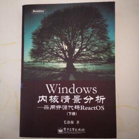 Windows内核情景分析:采用开源代码ReactOS(下册)