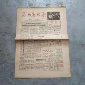 老报纸 湖北集邮报1991.6.15.(1一4版)