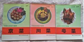 中国名菜制作图解 京菜 川菜  粤菜