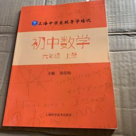 上海中学东校导学培优 初中数学 六年级 (上册