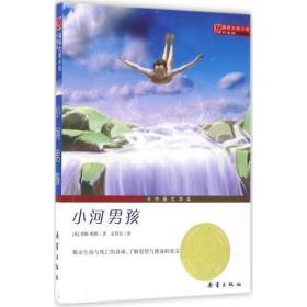 国际大奖小说升级版 小河男孩