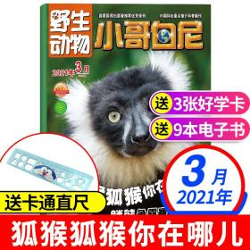 全新正版小哥白尼野生动物杂志2021年3月带赠品6-15岁青少年儿童文学中小学生自然科普百科图书非2020过期刊书刊6-12岁青少年课外阅读物