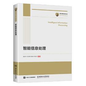 国之重器出版工程 智能信息处理