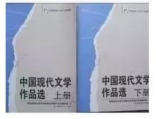 中国现代文学作品选 上下册 湖南师范大学9787810816687