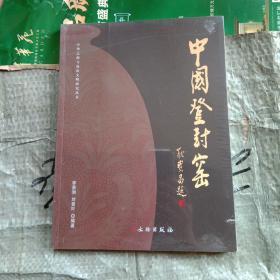 中国登封窑/中华之源与嵩山文明研究丛书