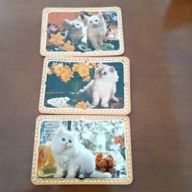 87年小猫年历卡3张