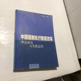 中国强制执行制度改革:理论研究与实践总结