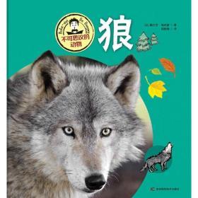 不可思议的动物狼