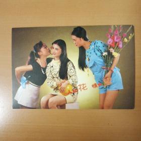 明信片 花儿与少女