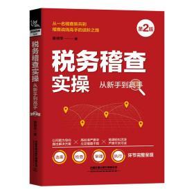 税务稽查实从新手到高手(第2版) 税务 杨光瑶