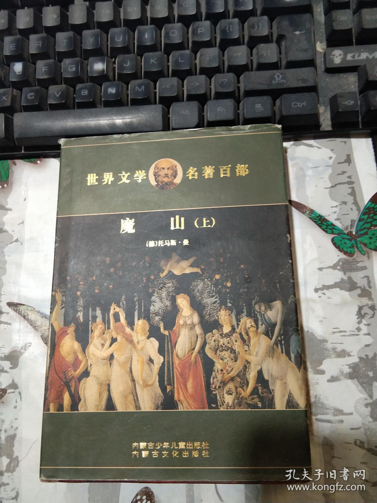 世界文学名著百部:魔山(上)