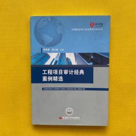 工程项目审计经典案例精选