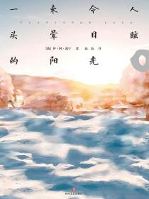 一束令人头晕目眩的阳光:蒲宁中短篇小说集