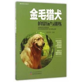 金毛猎犬的赏玩与训练
