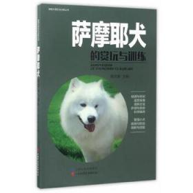 萨摩耶犬的赏玩与训练