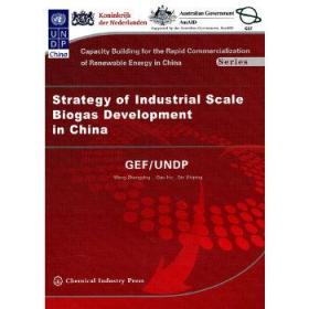中国工业化规模沼气开发战略(英文版)