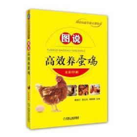 图说高效养蛋鸡