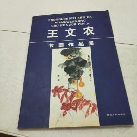 王文农书画作品集