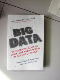 big data:the essential guide to work,life and learning in the age of insight