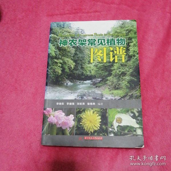 神农架常见植物图谱