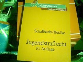 刑法系统论 (第10版)【德文版】