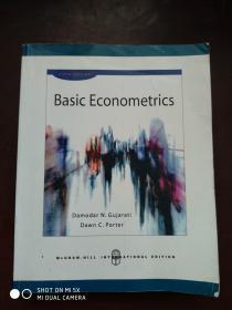 Basic Econometrics  计量经济学基础