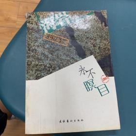 永不瞑目(修订本)——海岩长篇经典全集