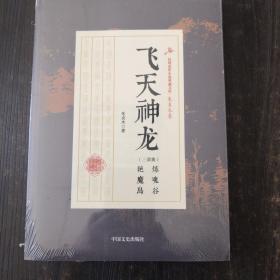 飞天神龙/民国武侠小说典藏文库·朱贞木卷