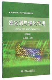 催化剂与催化作用 王桂茹大连理工大学9787561195819
