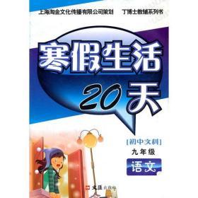寒假生活20天 九年级语文